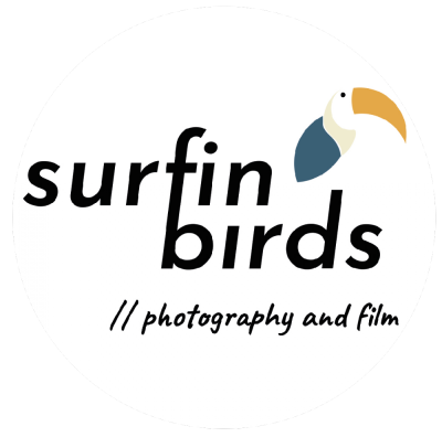Logo Surfin Birds